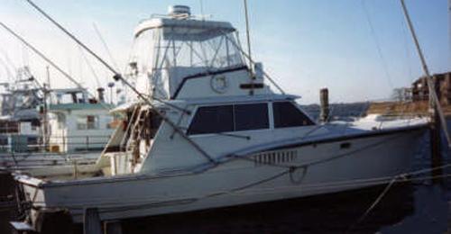 Teri jean ii fishing from belmar nj sport fishing for Belmar fishing charters